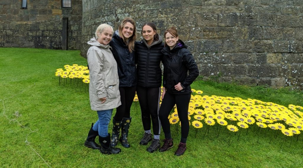 Chirk Castle Sunflower Meadow Charity Installation